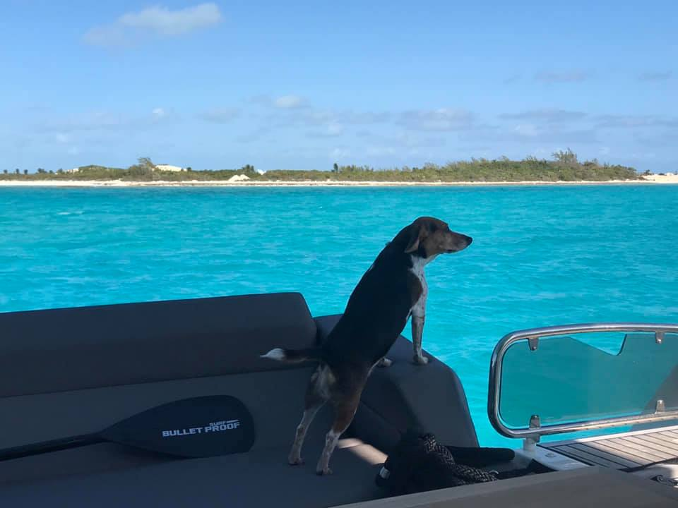 Lacey - turquoise water - Normans Cay