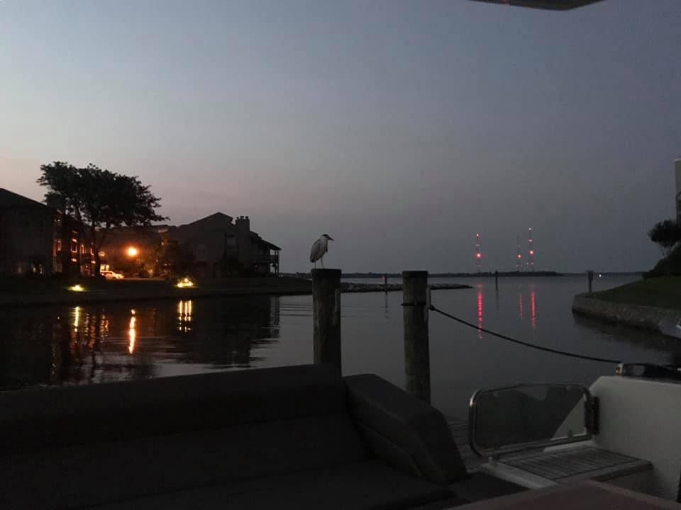Evening at the marina