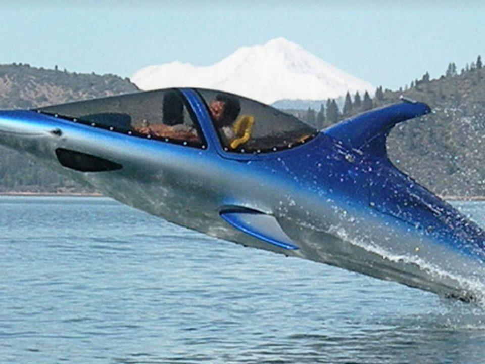 Dolphin Boat - Photo: www.thisiswhyimbroke.com